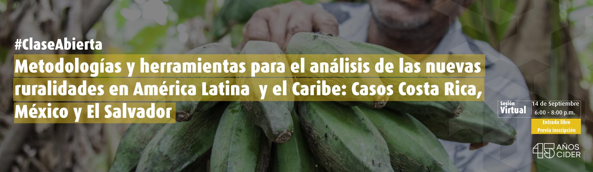 Metodologías y herramientas para el análisis de las nuevas ruralidades en América Latina y el Caribe: Casos Costa Rica, México y El Salvador