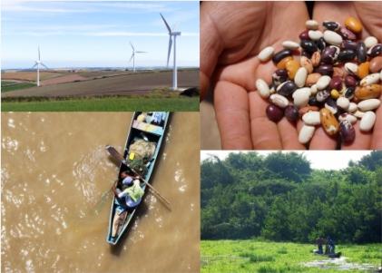 Imagene Sostenibilidad, ambiente y desarrollo