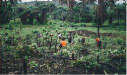 Cuando las desigualdades entran por la boca- Cider | Uniandes