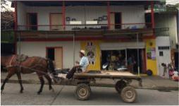 Ciudades Amazónicas como un reto y oportunidad en medio del COVID-19- Cider | Uniandes