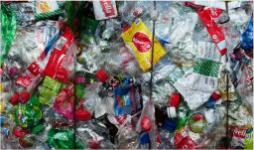 Contribuir a la sustentabilidad desde lo cotidiano - Cider | Uniandes