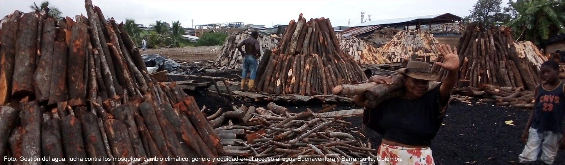 Agua, género y cambio climático: los casos de Barranquilla y Buenaventura- Cider | Uniandes