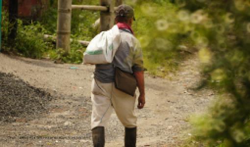 Retos y desafíos del ordenamiento territorial rural en Colombia. - Cider | Uniandes